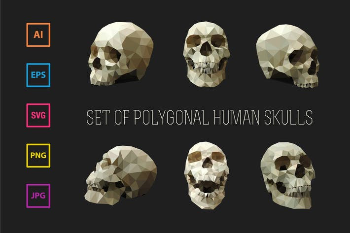 Thumbnail for Set of Polygonal Human Skulls