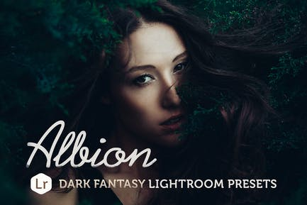 Albion Темная фантазия Пресеты Lightroom
