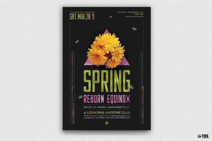 Thumbnail for Spring Equinox Flyer Template V6