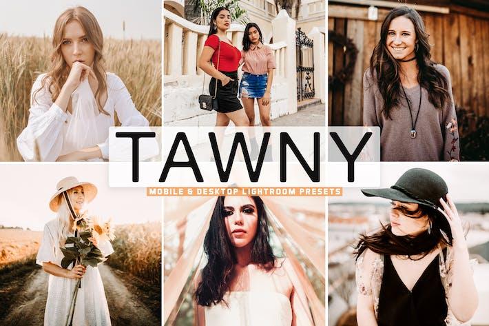 Thumbnail for Tawny Mobile & Desktop Lightroom Presets
