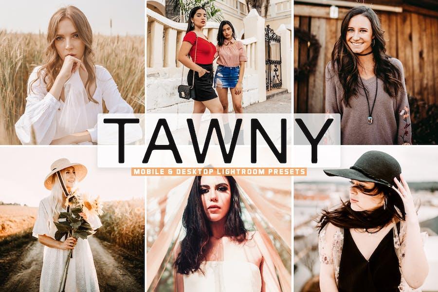 Tawny Mobile & Desktop Lightroom Presets