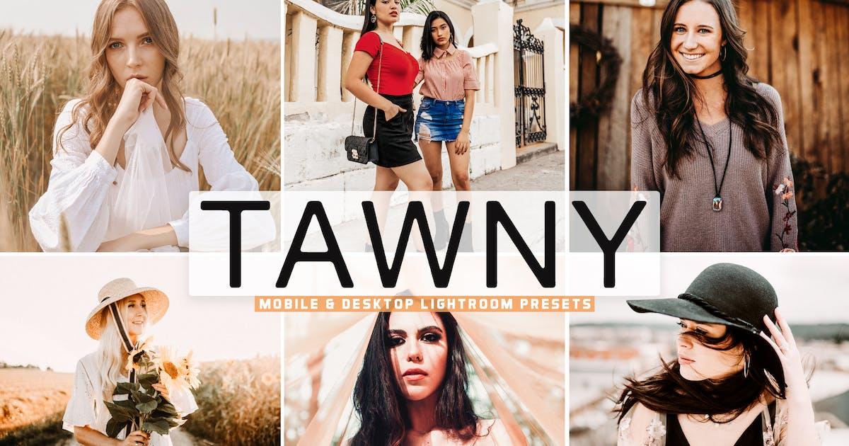 Download Tawny Mobile & Desktop Lightroom Presets by creativetacos