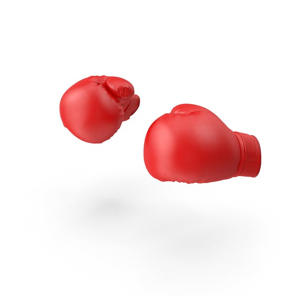 Thumbnail for Boxing Gloves