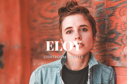 Eloy Lightroom Presets Dekstop and Mobile