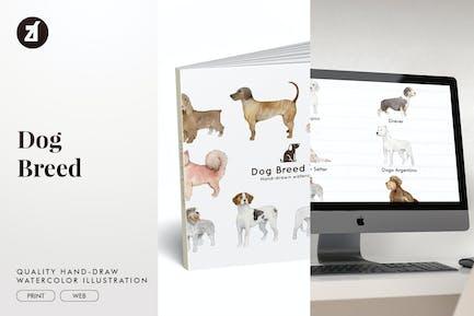 Dog Breed hand-drawn illustration