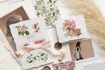 Zarte florale Botanik - Vintage-Illustrationen