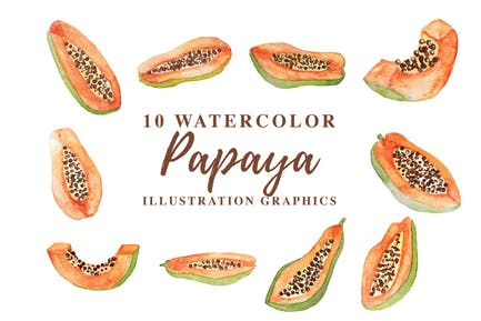 10 Aquarell Papaya Illustration Grafiken
