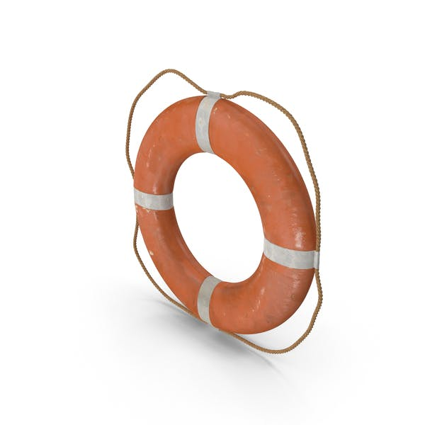 Cover Image for Life Preserver