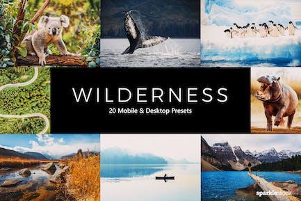 20 Wilderness Lightroom Presets & LUTs