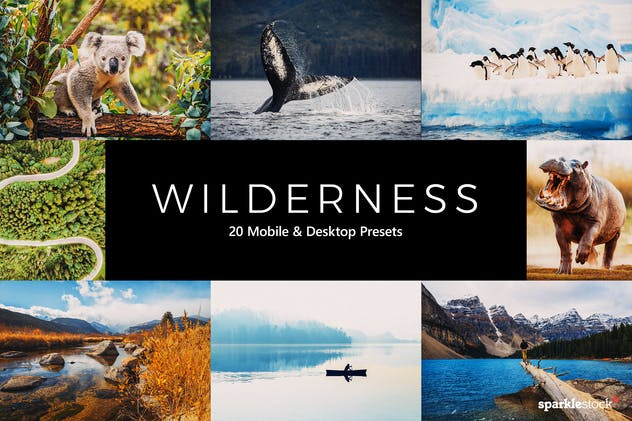 20 Wilderness Lightroom Presets & LUTs - product preview 8