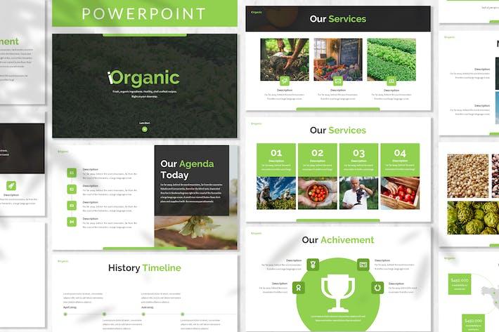 Iorganic Vegan Powerpoint Template By Designesto On Envato Elements