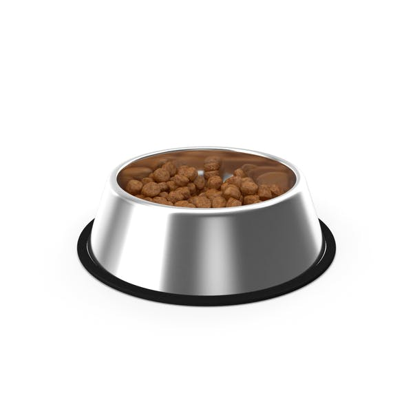 Dog Bowl Stainless Steel Food Container