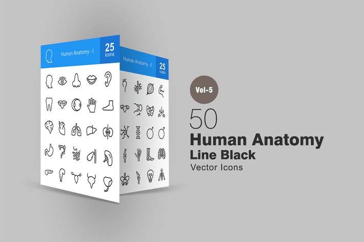 Thumbnail for 50 Human Anatomy Line Icons