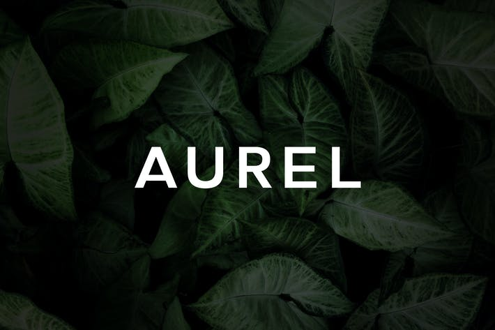 Thumbnail for Aurel - An Open Sans Serif Typeface