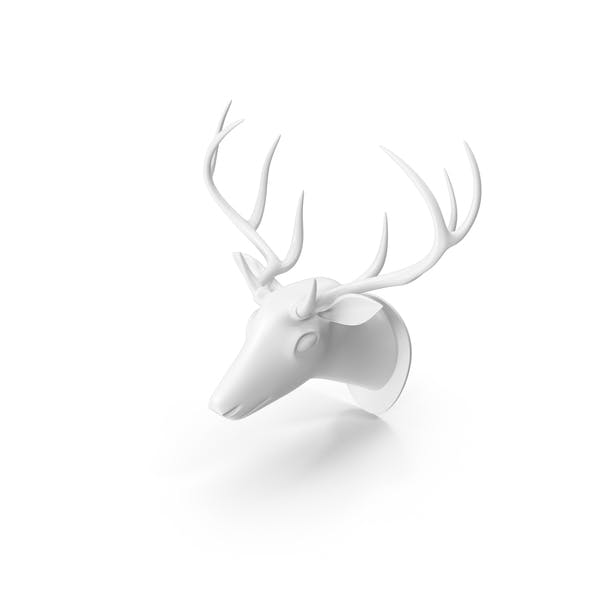Cover Image for White Deer Trophy Head