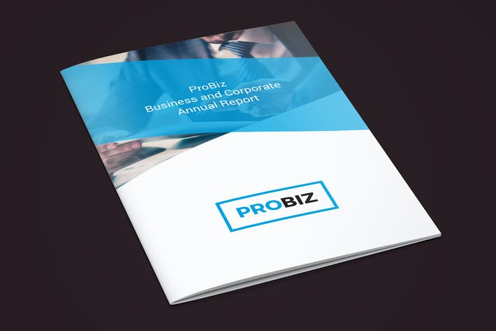 Thumbnail for ProBiz – Business and Corporate Annual Report