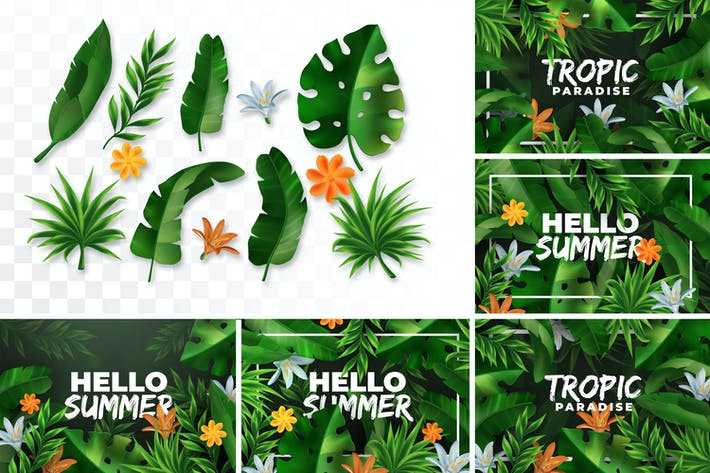 Thumbnail for Vector Tropical Elements & Backgrounds Collection