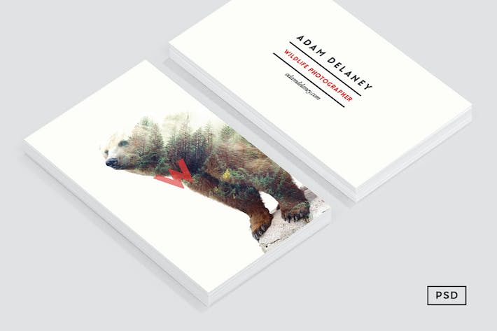 Thumbnail for Wildlife Business Card Template
