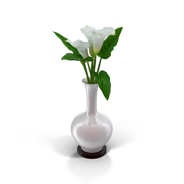 Calla Lilies In Vase By Pixelsquid360 On Envato Elements