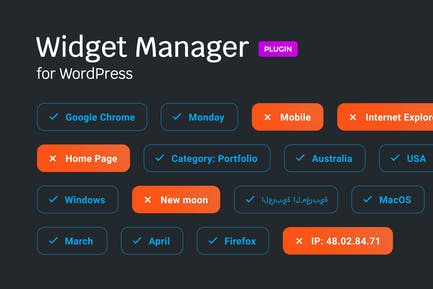 Widget manager for WordPress