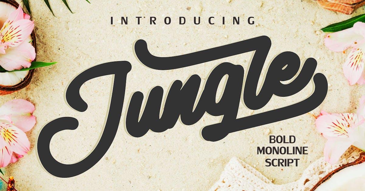 Download Jungle   Monoline Bold Script by Vunira