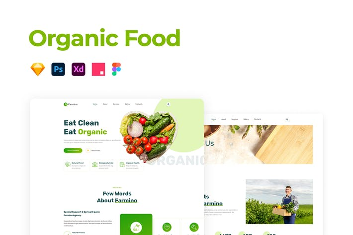 Thumbnail for Organic Food Template