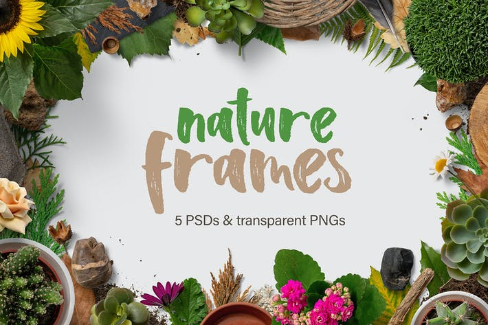 Thumbnail for 5 Nature Frames