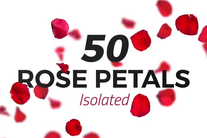 Thumbnail for 50 Isolated Red Rose Petals