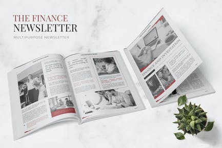 Finance And Investation Newsletter