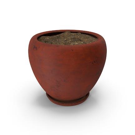Pot Rot