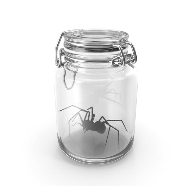 Glass jar with spider