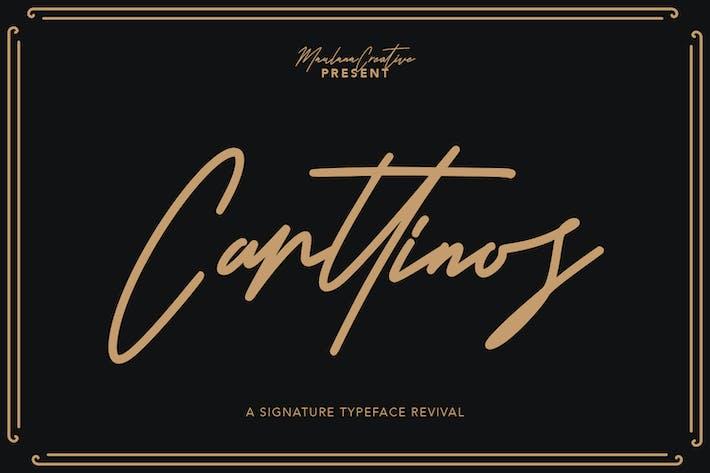 Carttinos Signature Typeface