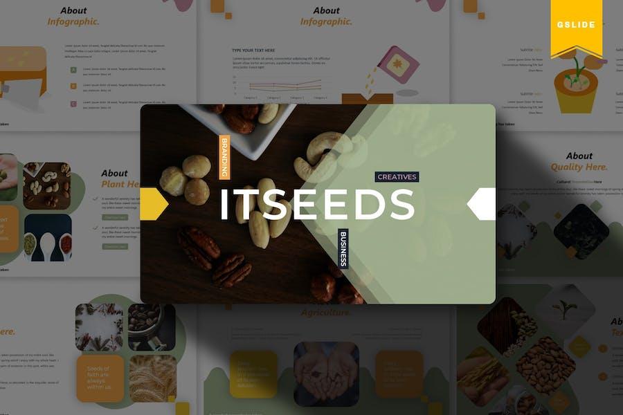 Itseeds | Google Slides Template