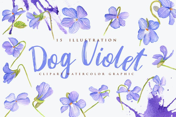 Thumbnail for 15 Watercolor Dog Violet Flower Illustration