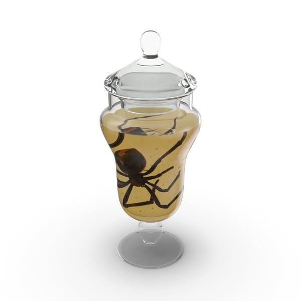 Thumbnail for Black Widow Specimen Jar