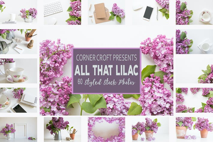 Thumbnail for Lilac Styled Stock Photo Bundle