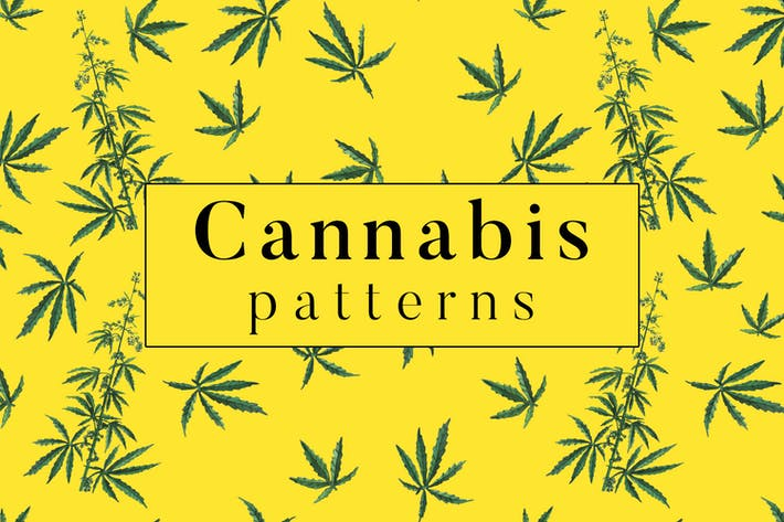 Thumbnail for Cannabis Patterns
