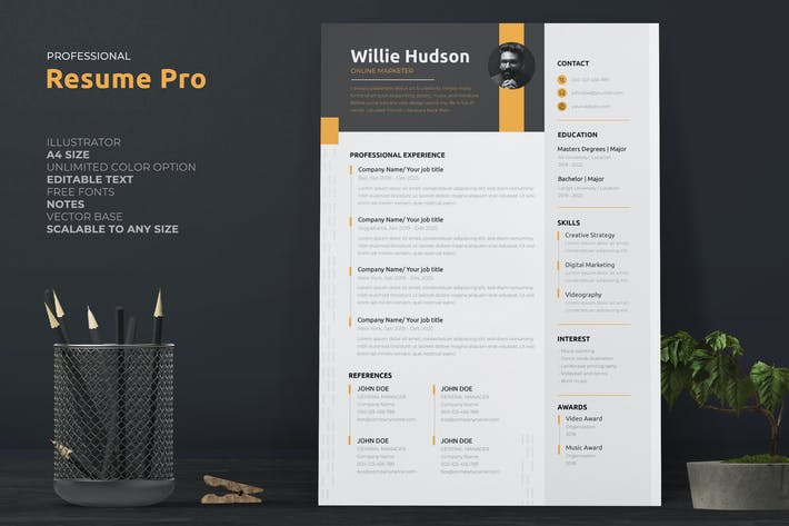 Thumbnail for Business Resume / CV Template Pro