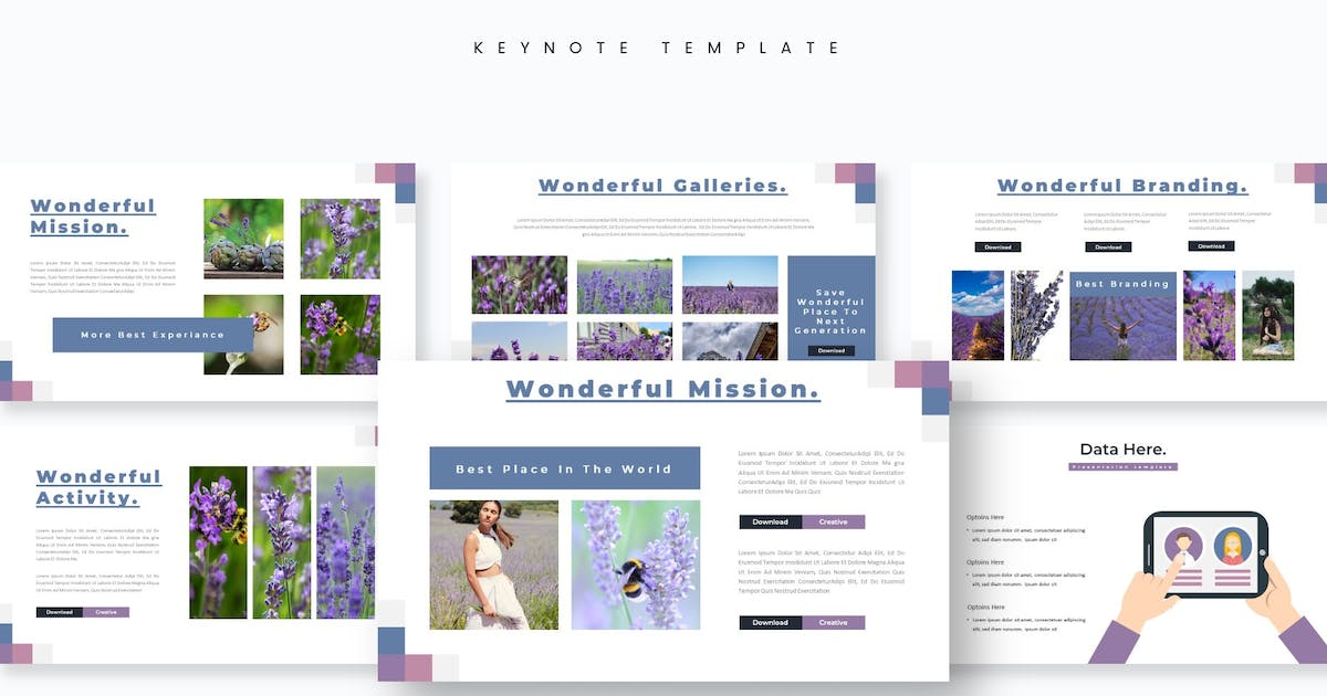Download Lavendia - Keynote Template by aqrstudio