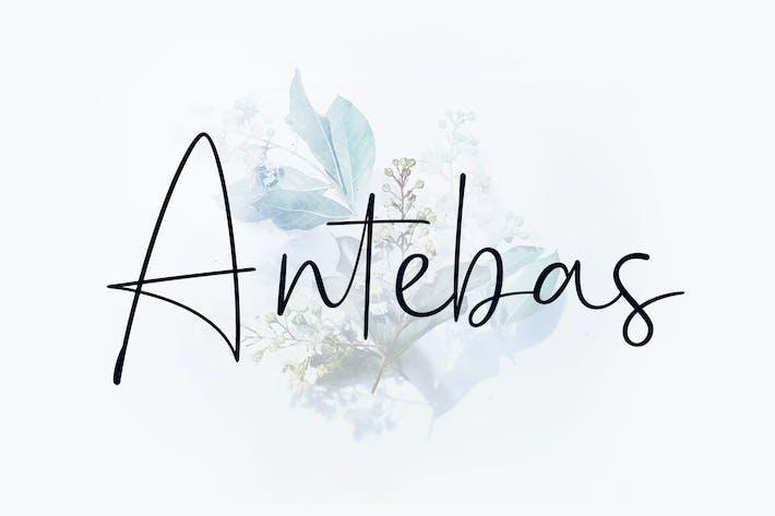 Thumbnail for Antebas