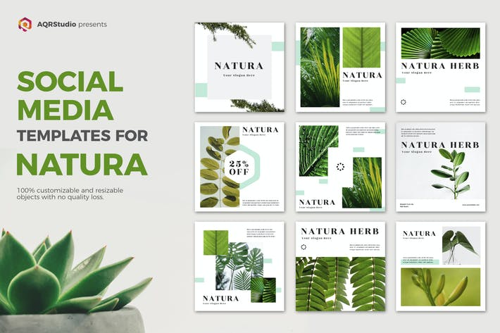 Thumbnail for NATURA Media Banners