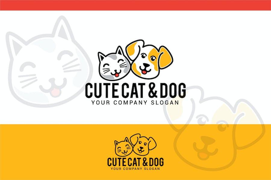 cute cat & dog