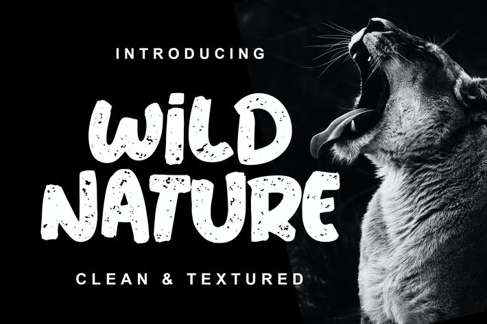 Thumbnail for Wild Nature Font