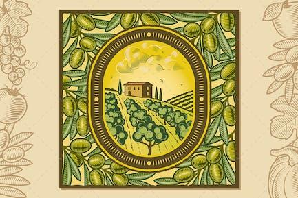 Olive Harvest Design