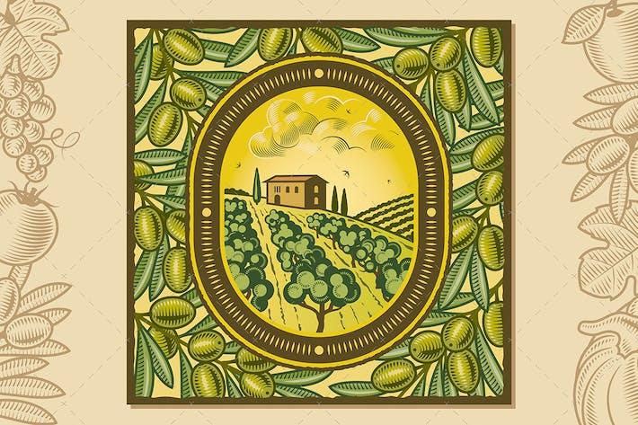 Thumbnail for Olive Harvest Design