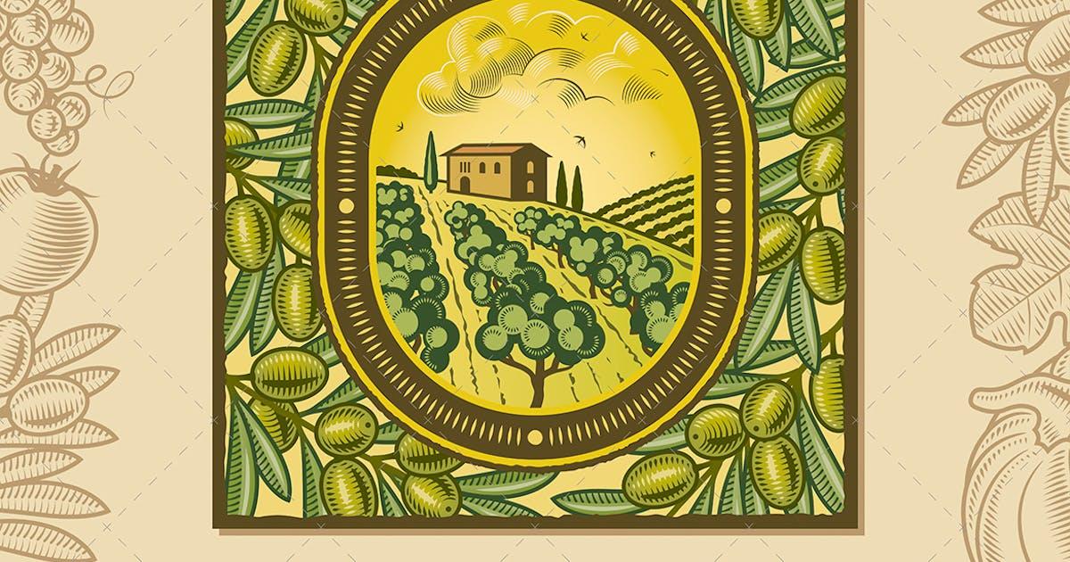 Download Olive Harvest Design by iatsun