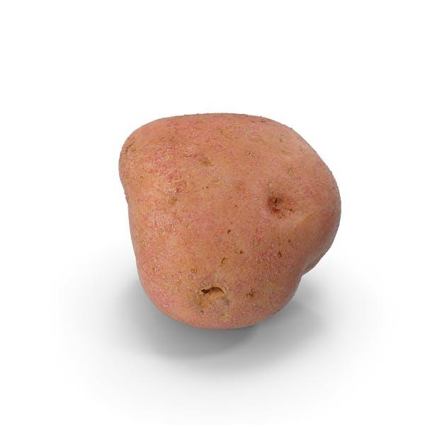 Thumbnail for Red Potato