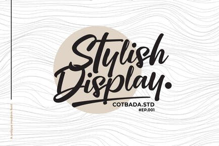Stylish Display Font