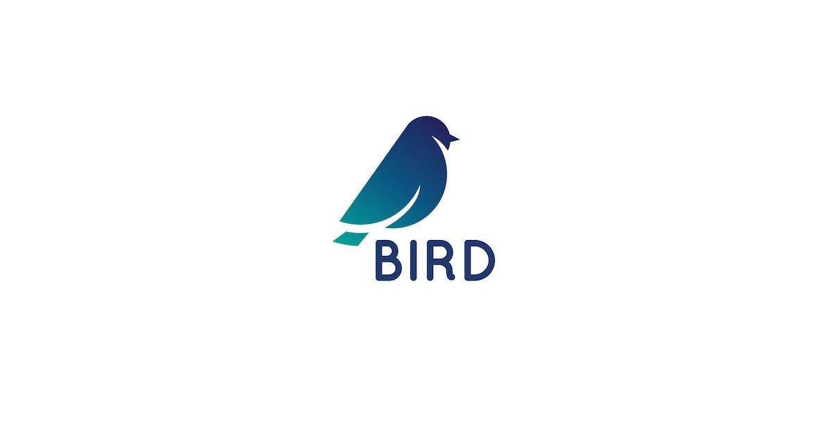 Bird Logo by 3ab2ou