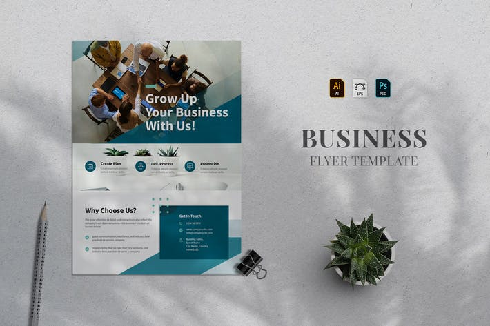 Business Flyer Template 30